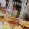 Georgische Wijnproeverij | Ghvino.nl
